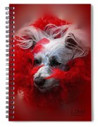 Feathers Of Red Spiral Notebook