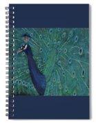 Feathery Fan Spiral Notebook