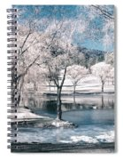 February 22 2010 Spiral Notebook