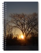February Sunrise Behind Elm Tree Spiral Notebook