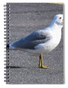 Feed Meeeee Spiral Notebook
