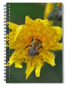 Feeding 2 Spiral Notebook