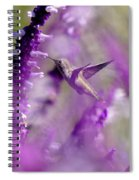 Feeding In The Midst Of Purple 1 Spiral Notebook