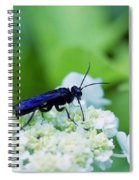 Feeding Insect Spiral Notebook