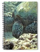Feeding Sea Turtle Spiral Notebook