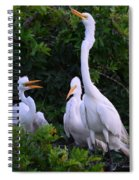 Feeding Time In The Great White Egret Rookery Spiral Notebook