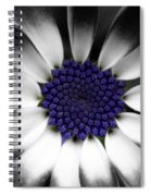 Feeling Blue Spiral Notebook