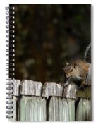 Feeling Squirrelly Spiral Notebook