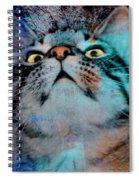 Feline Focus Spiral Notebook