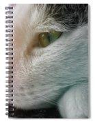 Feline Zen Spiral Notebook