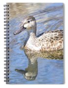 Female Blue Wing Spiral Notebook