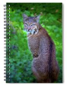 Female Bobcat Spiral Notebook