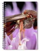 Female Nomada Spiral Notebook