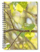 Female Rose-breasted Grosbeak Spiral Notebook