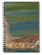 Female Wood Duck Spiral Notebook