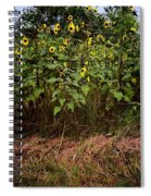 Fence Line Sunflowers Spiral Notebook