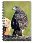 Fence Sitter Spiral Notebook