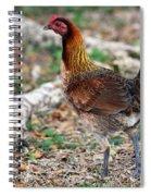 Feral Bird Spiral Notebook
