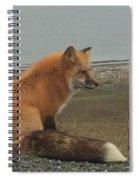 Ferdinand Fox  Spiral Notebook