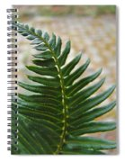 Fern Art Prints Green Garden Fern Branch Botanical Baslee Troutman Spiral Notebook