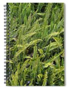 Fern Spiral Notebook