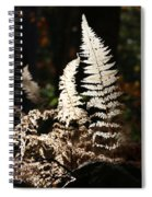Fern Glow 2 Spiral Notebook