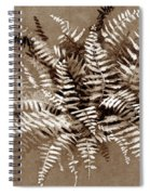 Fern In Sepia Spiral Notebook