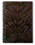 Fern Kaleidescope Spiral Notebook