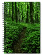 Fern Lined At In Ma Spiral Notebook