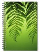 Fern On Green Spiral Notebook