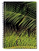 Fern-palm Abtract Spiral Notebook