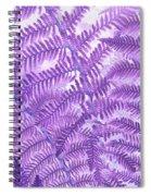 Fern Passion Spiral Notebook