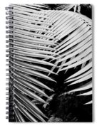 Fern Room Cycads Spiral Notebook