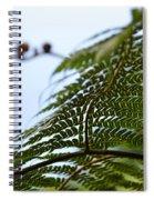 Fern Tree Frond Spiral Notebook