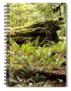 Fern Valley Spiral Notebook