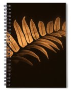 Fern Zen Spiral Notebook