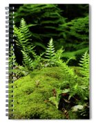 Ferns And Moss On The Ma At Spiral Notebook