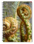 Ferns Art Print Forest Fern Artwork Canvas Baslee Troutman Spiral Notebook