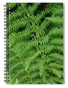 Ferns Au Naturale Spiral Notebook