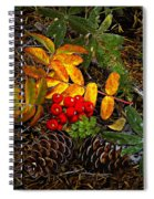 Festive Elements Spiral Notebook