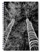 Festive Forrest Spiral Notebook