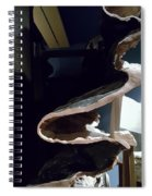 Layered Rock  Spiral Notebook