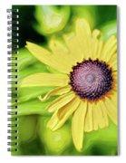 Fibonacci In The Light Spiral Notebook