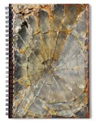 Fibonaccis Muse Spiral Notebook