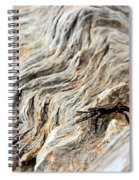 Fiddler Crab On Driftwood Spiral Notebook