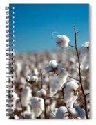 Field Spiral Notebook
