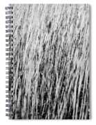 Field Grasses Spiral Notebook