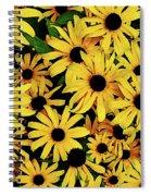 Field Of Black-eyed Susans Spiral Notebook