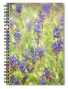 Field Of Blue Lupines  Spiral Notebook