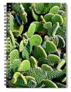 Field Of Cactus Paddles Spiral Notebook